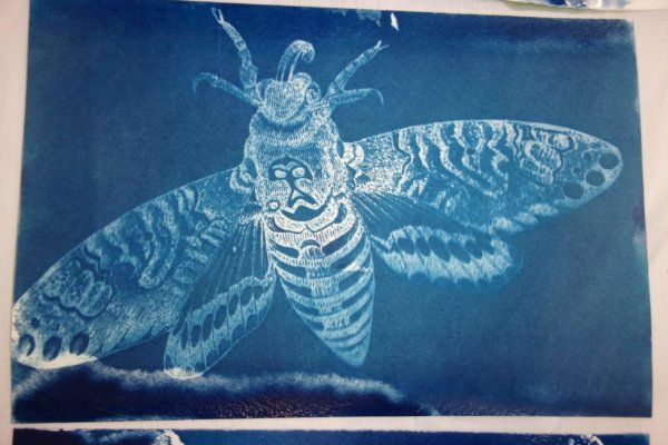 Students at a youth-in-care facility participated in a two day art-science workshop creating cyanotype paper and then adding designs to their paper using stencils and exposure to sunlight.