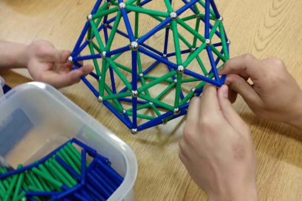 Students at a youth-in-care facility interacted with a virologist and learned how to construct 3D models of real viruses!