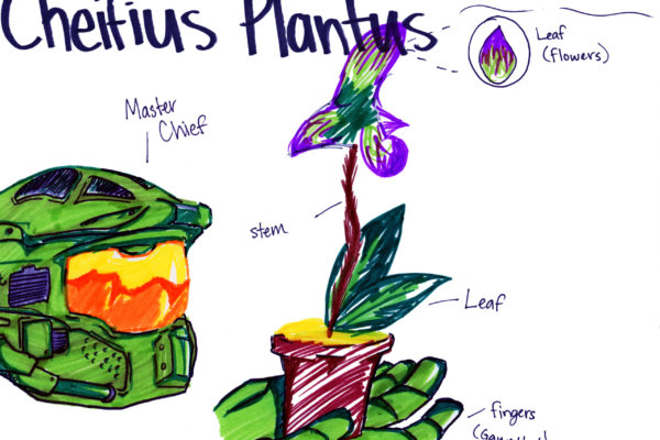Students at a youth-in-care facility learned about scientific names, plant parts, and botanical illustrations and then drew their own botanical artwork.